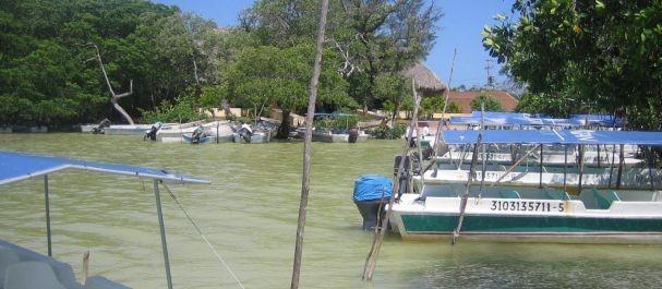 Fotografía de Celestún: Puerto en Celestún