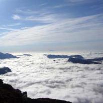 Vista con niebla veraniega