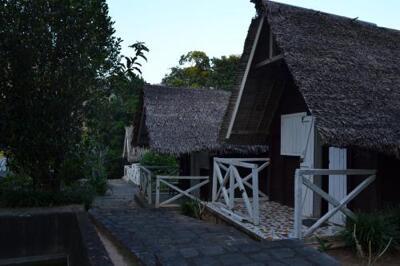 Photo – Fôret Austral Ranomafana- Fianarantsoa