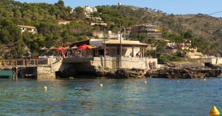 Picture Camp de Mar: Camp de Mar, Mallorca