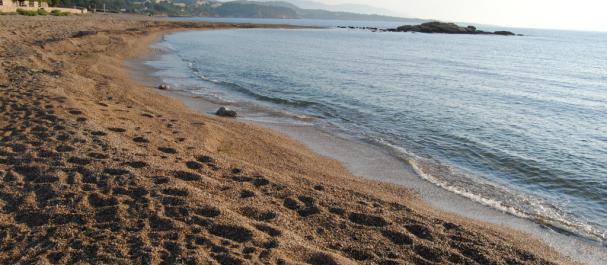 Fotografía de El Perello: El Perello Playa
