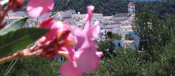 Fotografía de Guéjar Sierra: Vista del pueblo