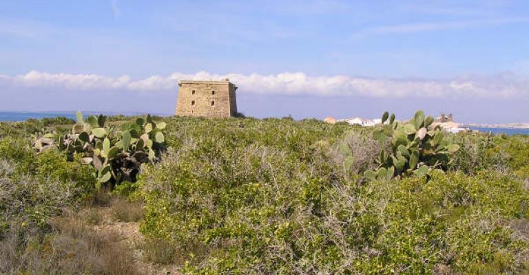 Fotografía de Isla de Tabarca: La Torre de San José