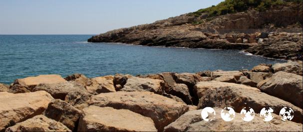 Fotografía de Tarragona: La Pineda