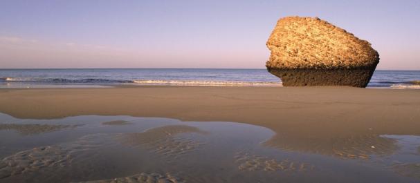 Fotografía de Matalascañas: Playa de Matalascañas
