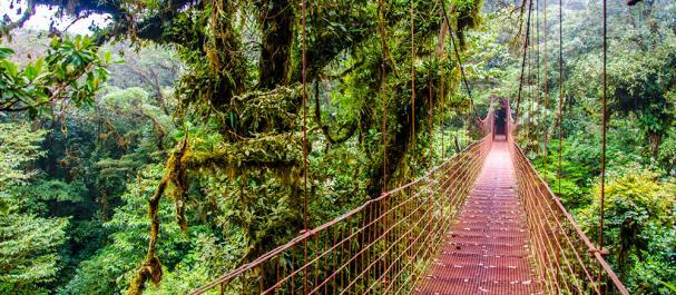 Fotografía de Costa Rica: Costa Rica