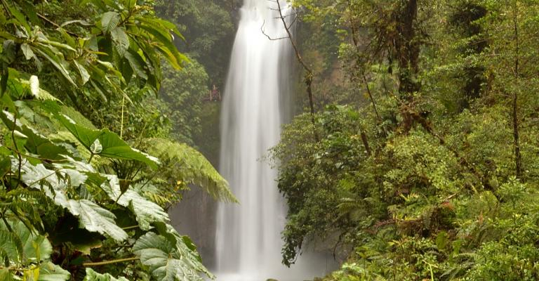 Foto Costa Rica: Costa Rica