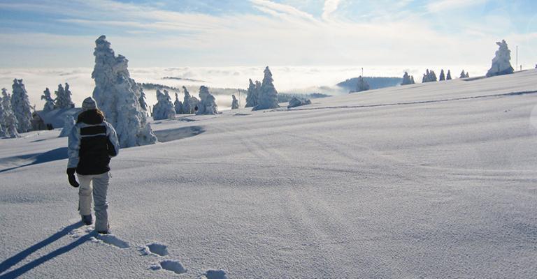 Fotografía de : Nieve en Gavarnie Altos Pirineos
