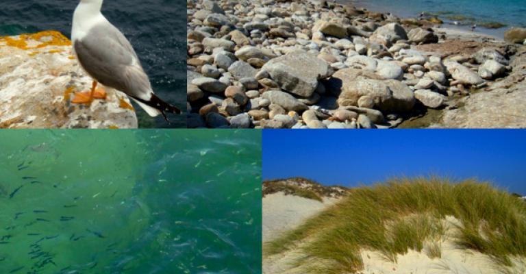 Fotografía de : Islas Atlánticas de Galicia