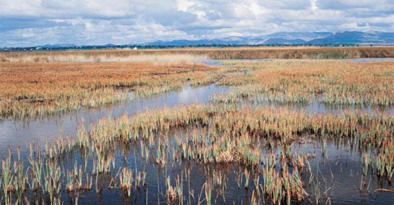 Foto von : Parque Nacional las Tablas de Daimiel