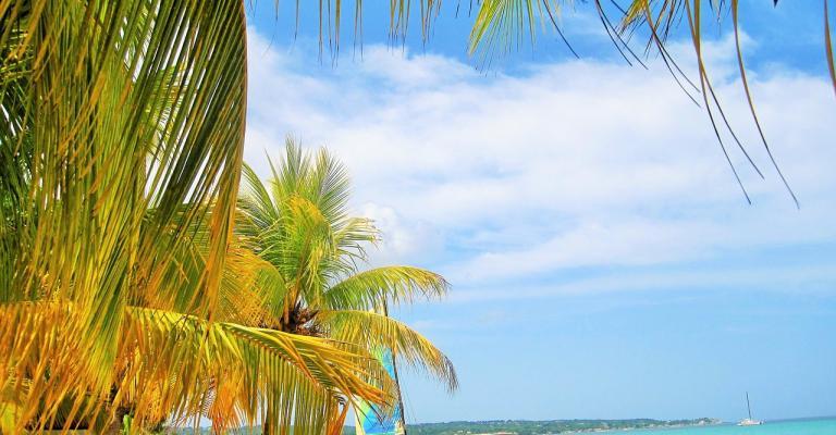 Fotografía de : Jamaica